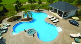 Freeform Pool & Spa with Deck Jets, Diving Boards and Living Area